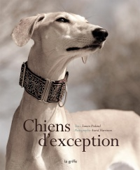 Chiens d'exception, Astrid Harrisson