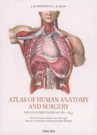 Vignette du livre Atlas Of Human Anatomy And Surgery -  Bourgery/jacob